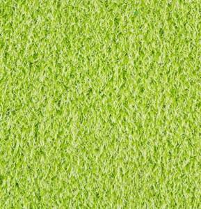 carpet art lime