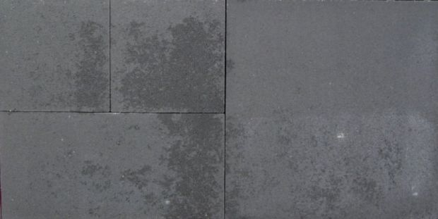 smartton montana negra